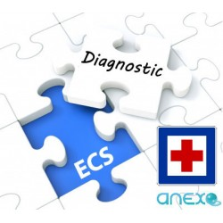 "DIAGNOSTIC ECS ""HOPITAL"" In Situ"
