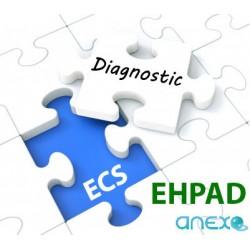 "DIAGNOSTIC ECS ""EHPAD"" In Situ"