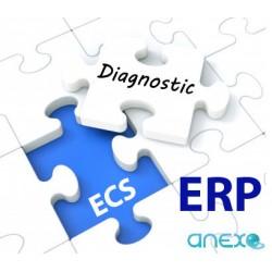 """DIAGNOSTIC ECS """"ERP"""" In Situ"""